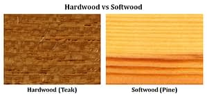 Difference between Hardwood and Softwood